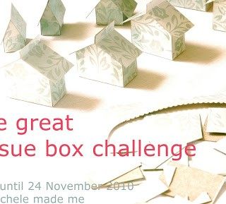 The Great Tissue Box Challenge 2010