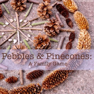 Pebbles and Pinecones: A Family Game