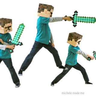 "The Boy as Minecraft's ""Steve"""