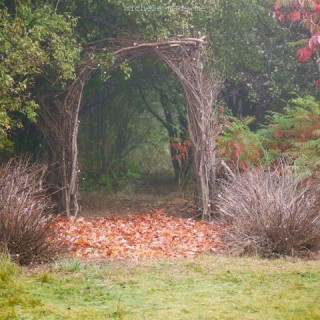 A Twig Arbor for The Thicket